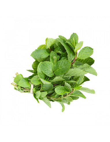 Mint 1bunch ( Approx 25-30gm)